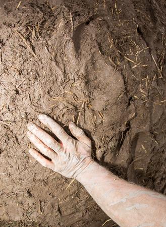 earth handful: hand in mud