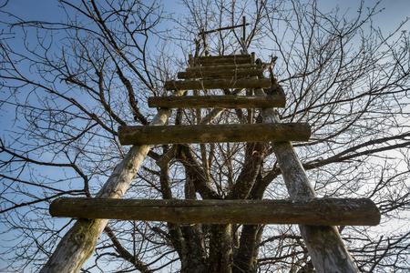 ハンターの発生、木のブラインド 写真素材