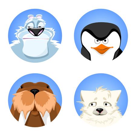 a set of avatars northern animals. polar bear, penguin, polar fox, walrus. cute animals on a blue background. vector illustrations.