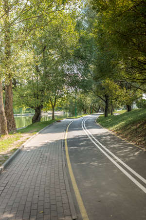 Bike path in the park with green trees. Beautiful summer landscape.