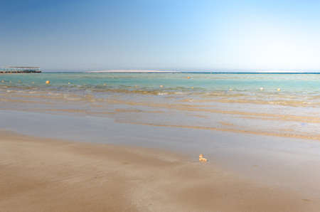 view of a beach and sea shore in summer day/Empty summer beach, with sunny sky Foto de archivo