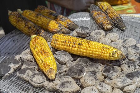 Fresh corn cobs are roasted on the coals. Close-up Imagens