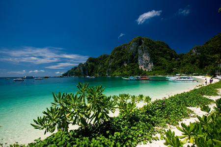 Tropical beach 写真素材