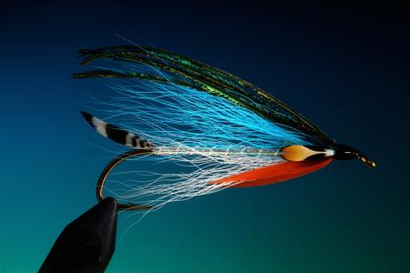 Fishing bait 免版税图像 - 118196171