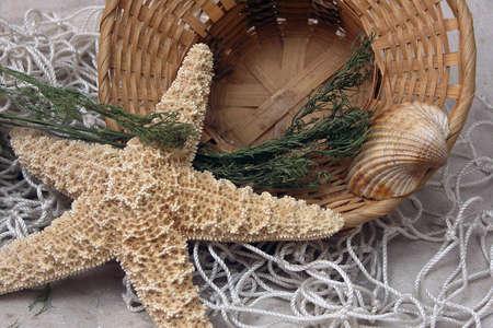 resort life: fresh gentle resort marine still life with starfish, basket, shell and fishnet