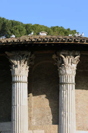 templo romano: romano templo de H�rcules V�ctor en Foro Boario de Roma, Italia