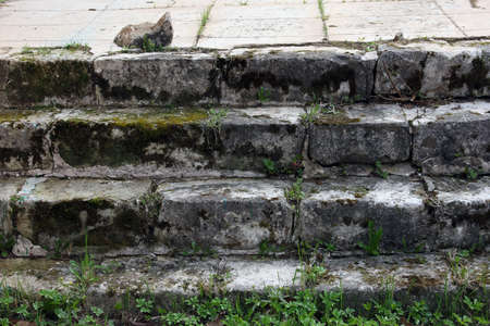 stone steps: old medieval grey stone steps of the orthodox church covered with green moss and grass, near Staritsa, Russia