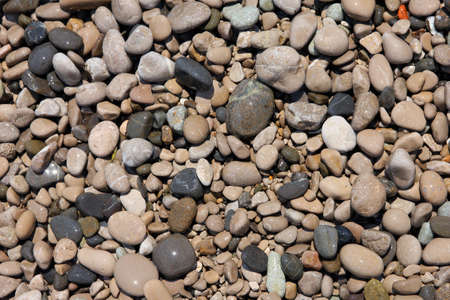 big slick: texture of beautiful wet round colored sea pebbles on pebble beach foreground closeup Stock Photo