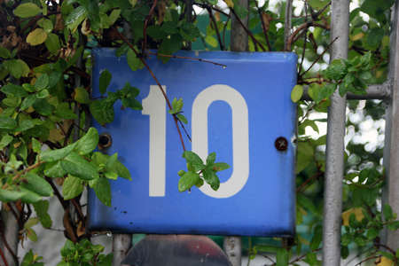 number ten: blue square metal number plate with the number ten among the green foliage in summer Stock Photo