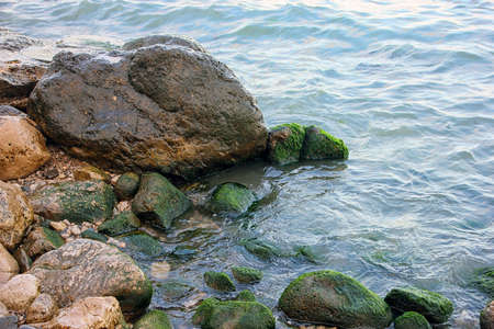 ooze: beautiful picturesque wild Black sea coast with boulders and rocks with green ooze in sea water