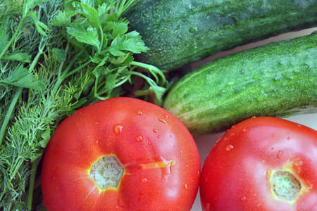 ingridients: ingridients for hit of summer season fresh vegetable salad,  tomatoes, cucumbers, parsley and dill closeup
