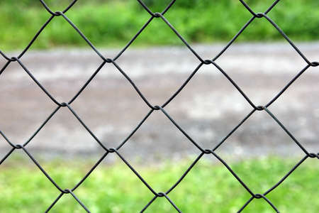 galvanized: mesh netting galvanized on the background of the road and grass