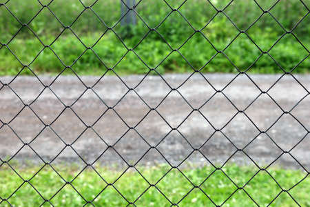 netting: mesh netting galvanized on the background of the road and grass