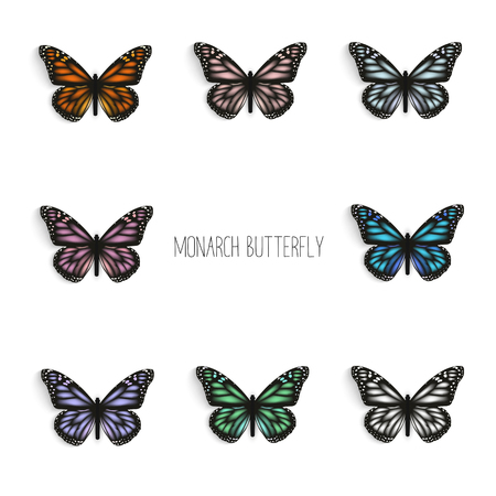 milkweed: Set of realistic monarch butterflies in different colors. Illustration