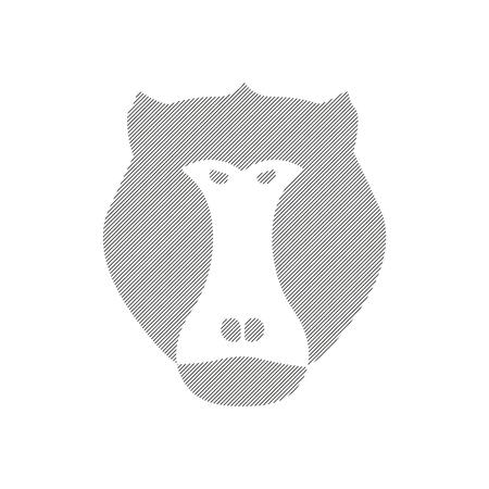baboon: Striped head of baboon, aggressive monkey in vector