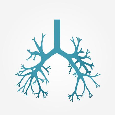bronchial: Human bronchus in vector.