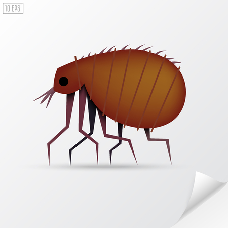 exterminate: Cartoon brown insect flea in material style