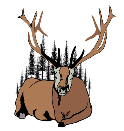 him: Lying deer and fir trees around him.