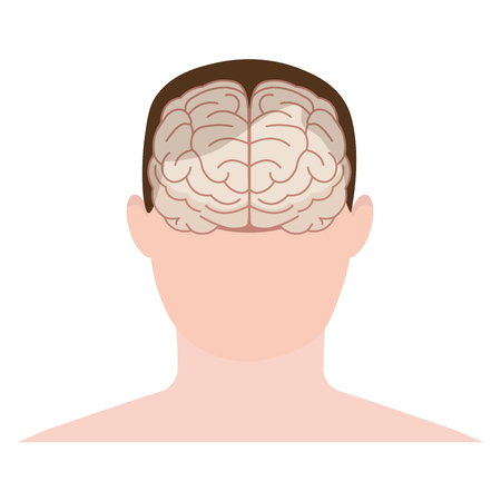 frontal lobe: Head human, face and brain in flat style. Vector illustration. Front view