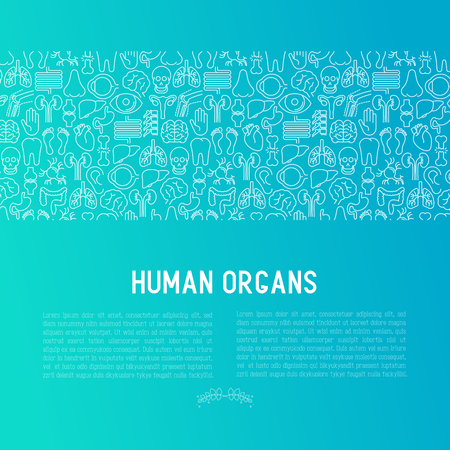 Human internal organs concept with thin line icons. Vector illustration for banner, web page, print media.