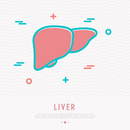 Liver thin line icon. Modern vector illustration of human internal organ.
