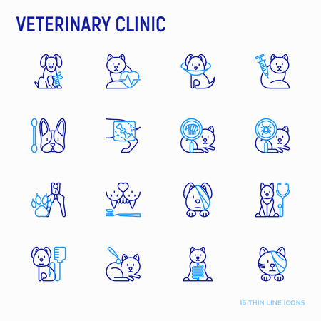 Veterinary clinic thin line icons set: broken leg, protective collar, injection, cardiology, cleaning of ears, teeth, shearing claws, bandage on eye, blood transfusion for dog. Vector illustration. 일러스트