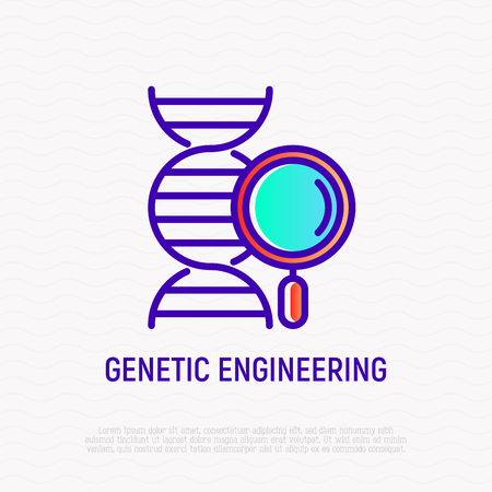Genetic engineering thin line icon: DNA with magnifier. Modern vector illustration.