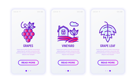 Winery thin line icons set: grapes, vineyard, grape leaf. Modern vector illustration for wine shop, delivery.