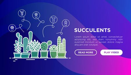 Cactus and succelents in pots concept with thin line icons. Modern vector illustration, web page template for shop of plants on gradient background.