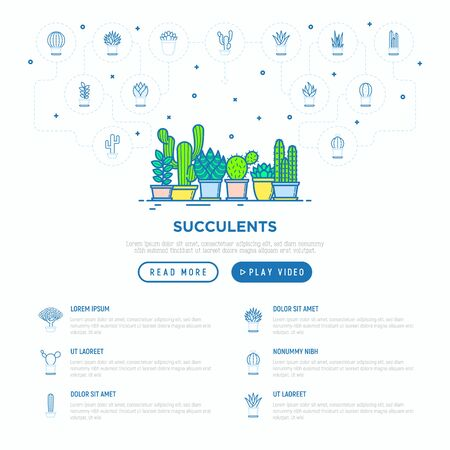 Cactus and succulents in pots concept with thin line icons. Modern vector illustration, web page template for shop of plants. Ilustrace