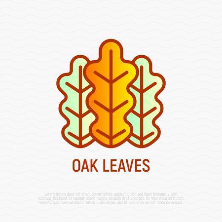 Oak leaves thin line icon. Modern vector illustration.