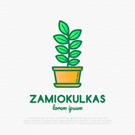 Succulent Zamiokulkas in pot. Thin line icon. Modern vector illustration of houseplant.