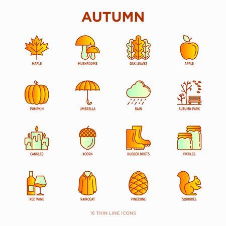 Autumn thin line icons set: maple, mushrooms, oak leaves, apple, pumpkin, umbrella, rain, candles, acorn, rubber boots, raincoat, pinecone, squirrel. Modern vector illustration.