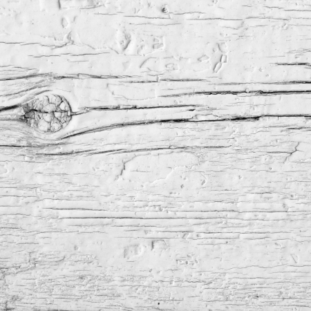 Branch primer plano en una pared r�stico blanco. Weathered madera con esmalte blanco.
