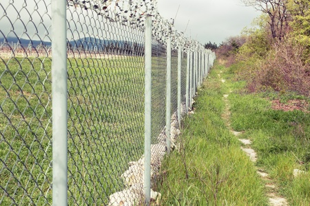 concertina: Concertina wire atop a fence protect in the nature.