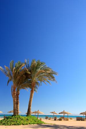 Hermosa playa tropical.