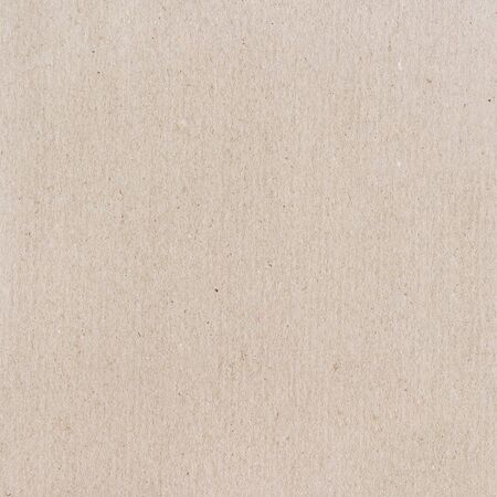paperboard: Carton texture. Beige paperboard sheet as background.