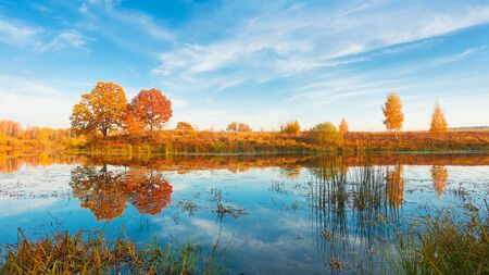 Amazing autumn landscape, forest and sky reflected in water, nature. Zdjęcie Seryjne