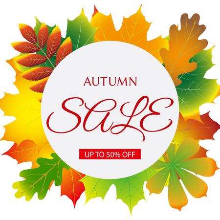 seasonal: seasonal autumn sales background with colored leafs