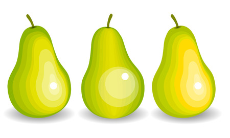 simple cross section: Simple vector pears. A set of yellow and green pears