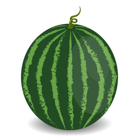 ジューシーなスイカは、白い背景で隔離。健康食品のコンセプトです。野菜食品ビタミンを食べる。  イラスト・ベクター素材