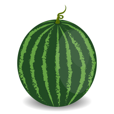 Juicy watermelon isolated on white background. Healthy food concept. Veggie food, eat vitamins.
