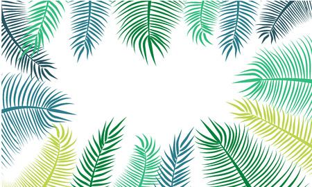 hamedoreya: Green coconut leaf frame isolated on white background