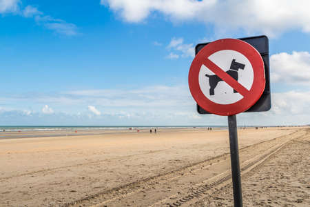 restrictive: no dogs prohibitory restrictive sign on the beach Stock Photo