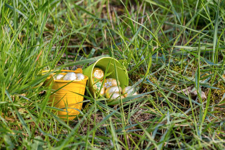 irish easter: Easter eggs in spring sunny day, Luxembourg