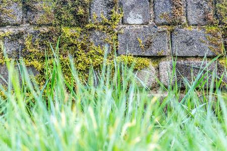 frescura: la frescura de abril en Luxemburgo