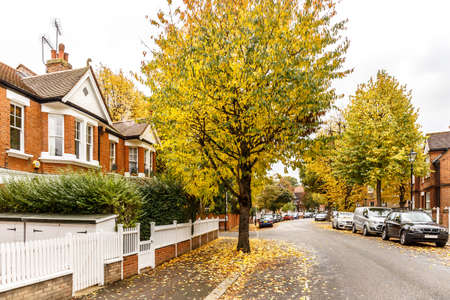 let: Chiswick suburb street in autumn, London, England Stock Photo