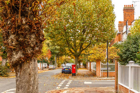 Chiswick suburb street in autumn, London, England Stock Photo