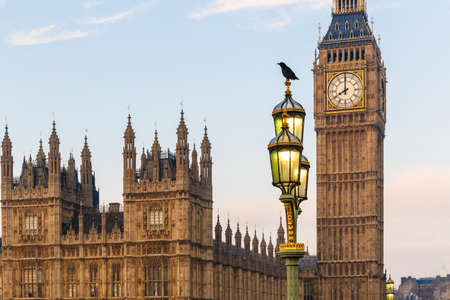 Raven on lampost at Houses of Parliament in early winter morning, London