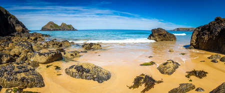 Gull rocks on sunny day in Hollywell Bay in Cornwall, UK